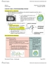 BIOC32H3 Lecture Notes - Lecture 10: Myelin, Schwann Cell, Peripheral Nervous System