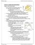 BIOC32H3 Lecture Notes - Lecture 11: Extracellular Fluid, Exocytosis, Connexon