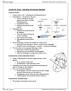 BIOC32H3 Lecture Notes - Lecture 19: Primary Motor Cortex, Visual Cortex, Rubrospinal Tract