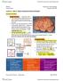 BIOC32H3 Lecture Notes - Lecture 17: Cardiac Output, White Matter, Meninges