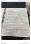 BIOL 151 Lecture Notes - Lecture 3: Pyrimidine, Amine, Aldehyde