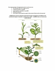 BIOL 111 Lecture Notes - Symbiosis, Transpiration, Root Hair