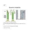 BIO130H1 Lecture Notes - Lecture 8: Epithelium, Desmosome, Intermediate Filament
