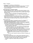 PSYC 2230 Lecture Notes - Visual Cortex, Torsten Wiesel, Occipital Lobe