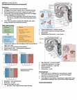 HMB200H1 Lecture Notes - Lecture 13: Central Pattern Generator, Brown Adipose Tissue, Perspiration