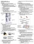 HMB200H1 Lecture Notes - Lecture 16: Limbic System, Amygdala, Vasopressin