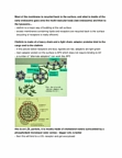 ANAT 262 Lecture Notes - Transferrin Receptor, Epidermal Growth Factor Receptor, Ldl Receptor