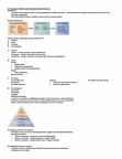 GEO 301 Lecture Notes - Lecture 7: Marketing Buzz, Selective Exposure Theory, Cognitive Dissonance