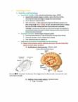 PSYC 367 Lecture Notes - Lamarckism, Olfactory Bulb, Darwinism