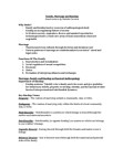 ANT 1101 Lecture Notes - Trobriand Islands, Enculturation, Polyamory