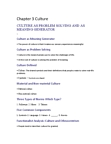 Sociology 1020 Lecture Notes - Consumerism, Postmodern Culture, Symbolic Interactionism