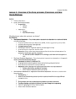 ANT203Y1 Lecture Notes - Lecture 8: Wilfrid Le Gros Clark, Mouse Lemur, Treeshrew
