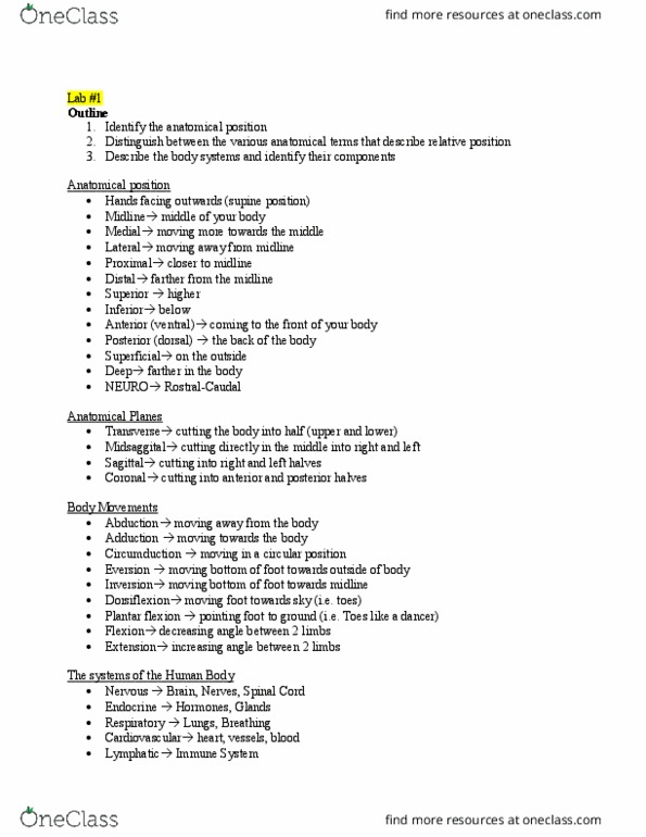 Study Guides for Anatomy and Cell Biology 2221 at Western