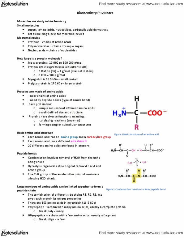 Class Notes for Biochemistry at University of Guelph (U OF G) - OneClass