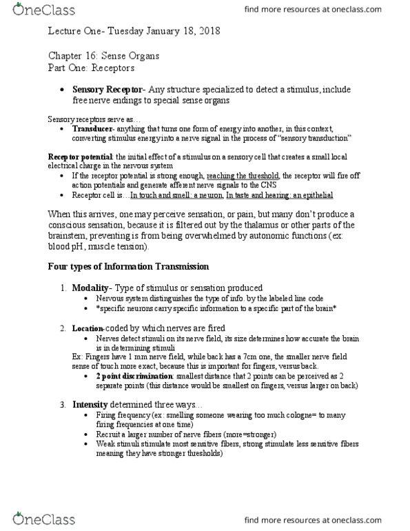 HSC-231 Lecture Notes - Lecture 1: Afferent Nerve Fiber, Special Senses,  Thalamus