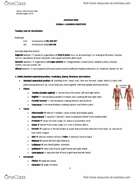 All Educational Materials for Jennifer Burgoon - OneClass