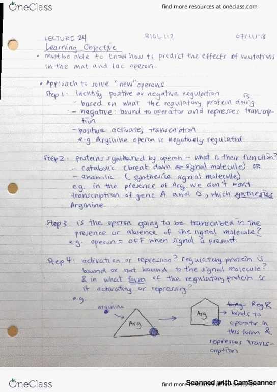 Study Guides for BIOL 112 at University of British Columbia (UBC