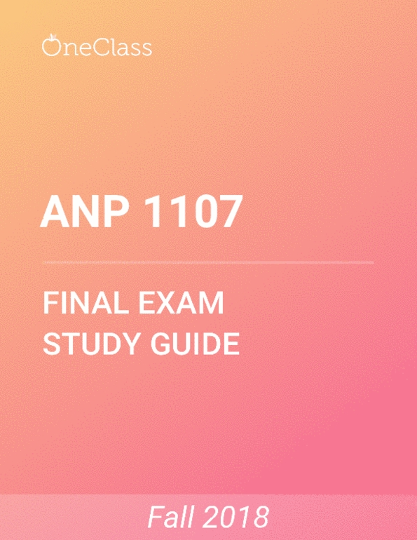 Study Guides for Anatomy and Physiology at University of