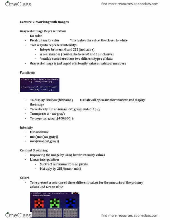ENGR 101 Lecture Notes - Lecture 7: Linear Interpolation, Matlab, Transpose