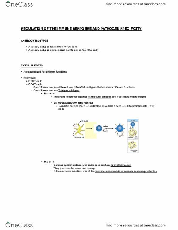 Cumulative Sum Cs61a