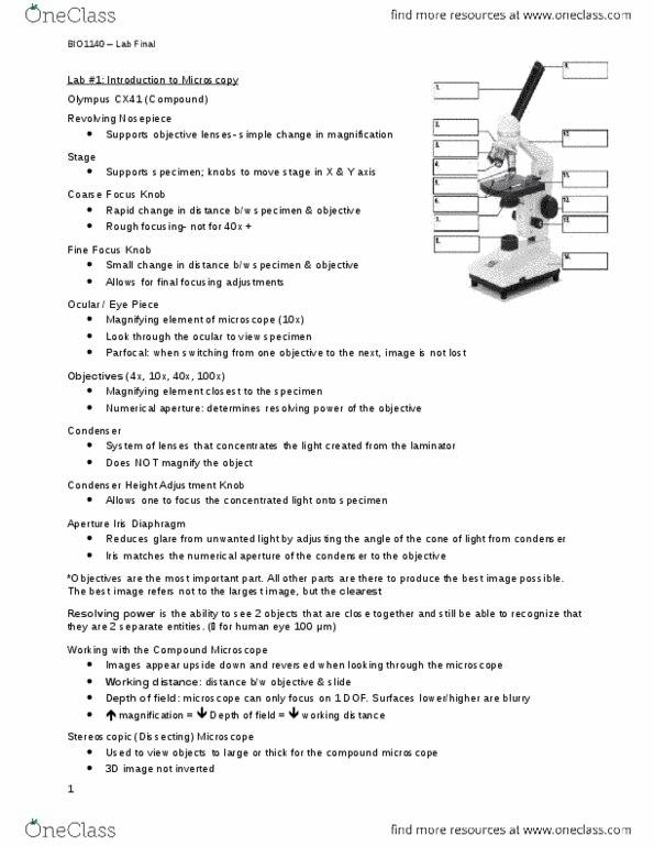 BIO 1140 Study Guide - Final Guide: Endomembrane System, Cell Membrane,  Elastin