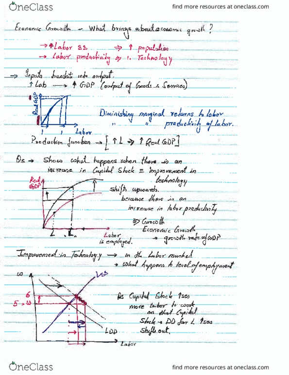 ECON 102 Lecture Notes - Lecture 5: Production Function